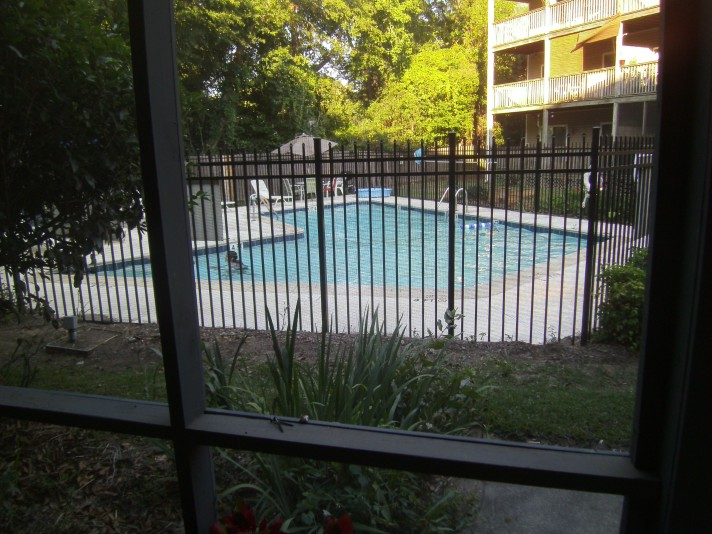 This image has an empty alt attribute; its file name is pool-from-porch.jpg